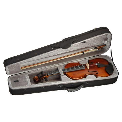 Akustische Geigen