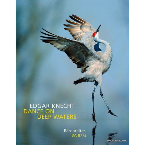 BARENREITER KNECHT EDGAR - DANCE ON DEEP WATERS - PIANO