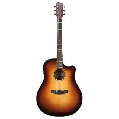 BREEDLOVE DCD21CES DISCOVERY WESTERN SB CW