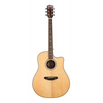 BREEDLOVE STAGE WESTERN CW LR BAGGS