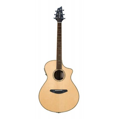 BREEDLOVE STC22CE STAGE CONCERT CW