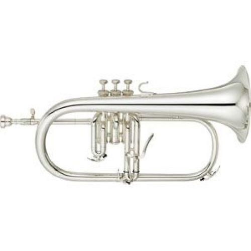 Professionele bugels