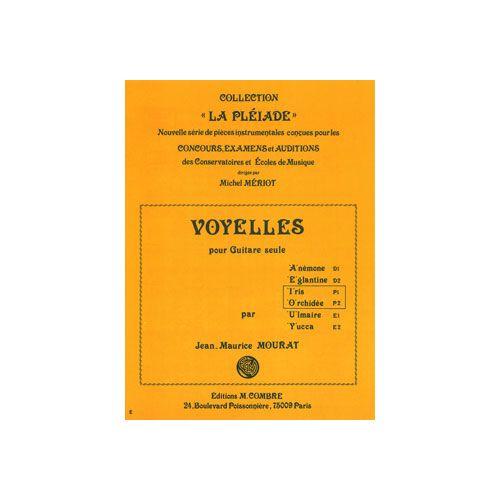 COMBRE MOURAT JEAN-MAURICE - VOYELLES I ET O (IRIS - ORCHIDEE) - GUITARE