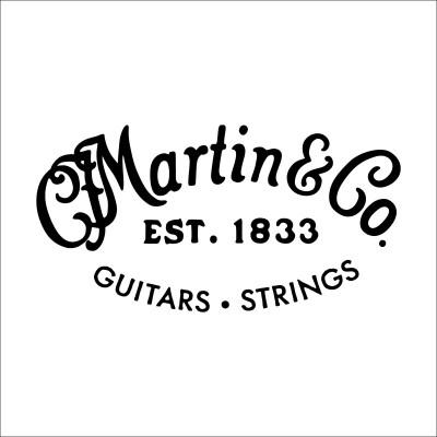 MARTIN GUITARS M12HTT AUTHENTIC ACOUSTIC SP RETAIL BY 12 PIECES ROPE UNIT SP STEEL