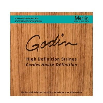 GODIN STRINGS SET FOR SEAGULL MERLIN