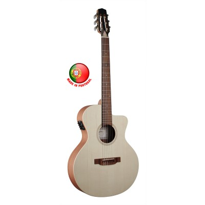 Acoustic electric guitars