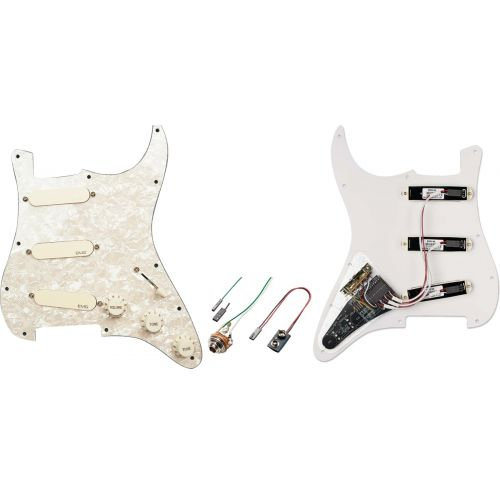 EMG DG20 DAVID GILMOUR PRO SERIES STRAT* PICKGUARD COLLECTION