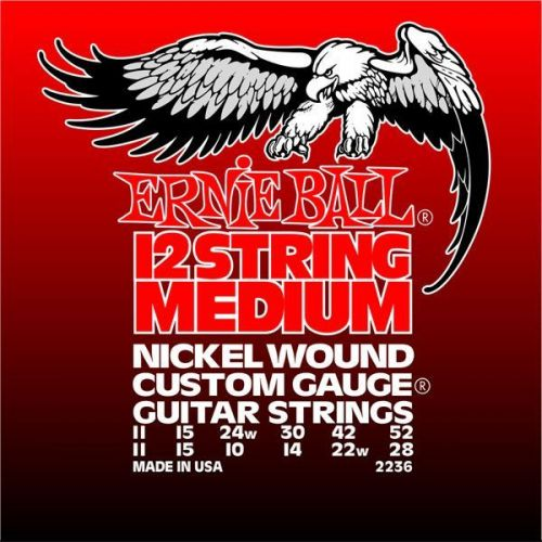 12 strings electric sets