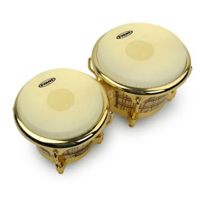 Peaux de bongos