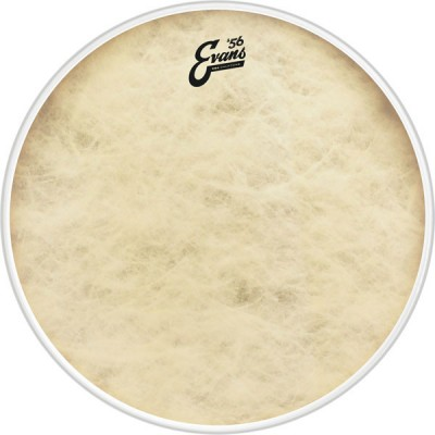 EVANS BD16GB4CT - EQ4 CALFTONE 16