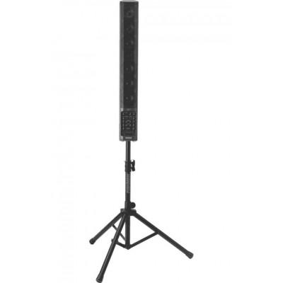 FISHMAN SA300X - 330 WATTS - PRO-AMP-SL2