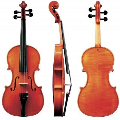 Estojos de violino