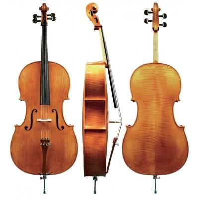 Violoncelles acoustiques