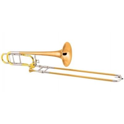 Tromboni professionali