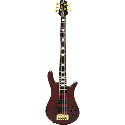 5-string electric bass