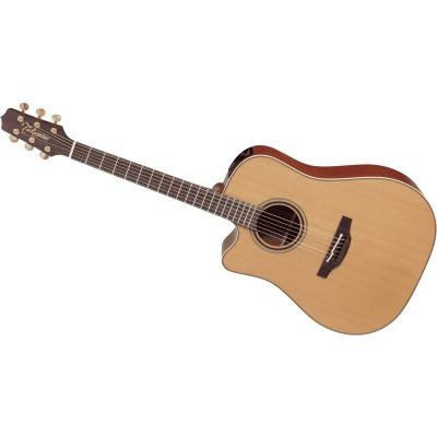 guitare takamine