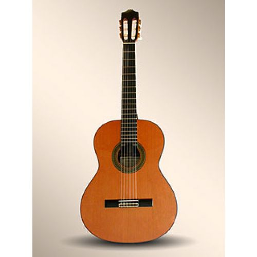 Guitares - Achetez moins cher ! Woodbrass N°1 Français