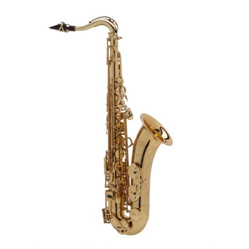 SELMER SUPER ACTION 80 SERIES II JUBILE GG (GOLD LACQUERED ENGRAVED)