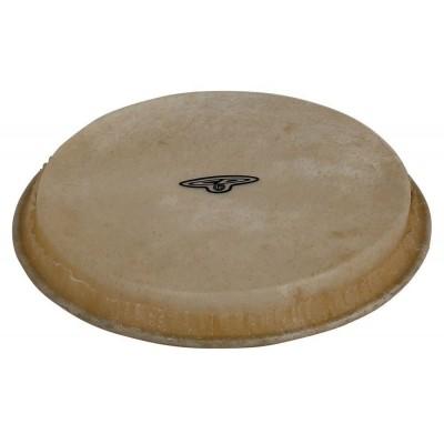 Parches de bongo