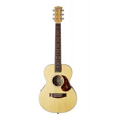 guitares electro acoustiques