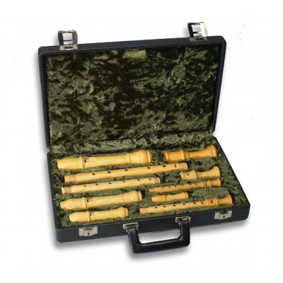 Recorder cases and bags