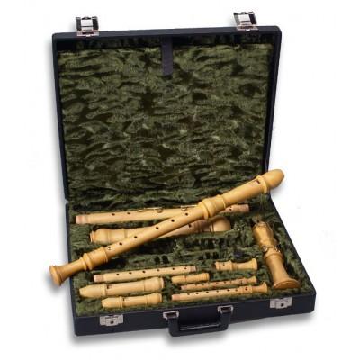 Etuis et housses flûtes à bec