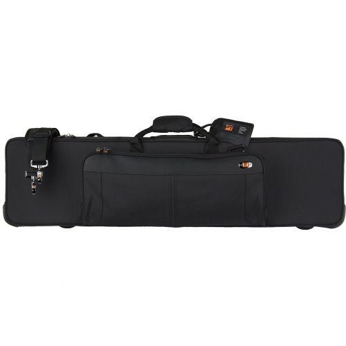 Clarinet cases and bags