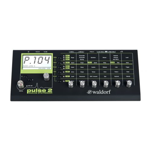 WALDORF WALDORF PULSE 2 ANALOG SYNTHESIZER