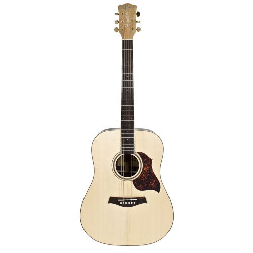 WSL DREADNOUGHT ROSEWOOD EMOTION