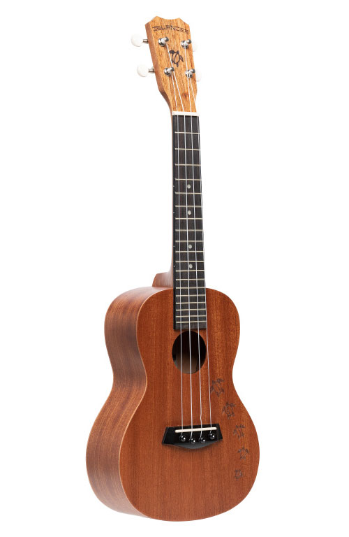 MC-4-HNS TRADITIONAL TURTLE CONCERT HONU