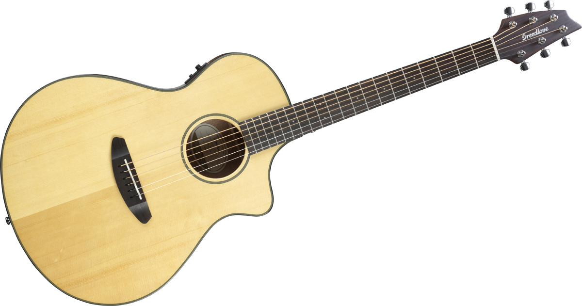 Breedlove Discovery Concert Cw Fishman