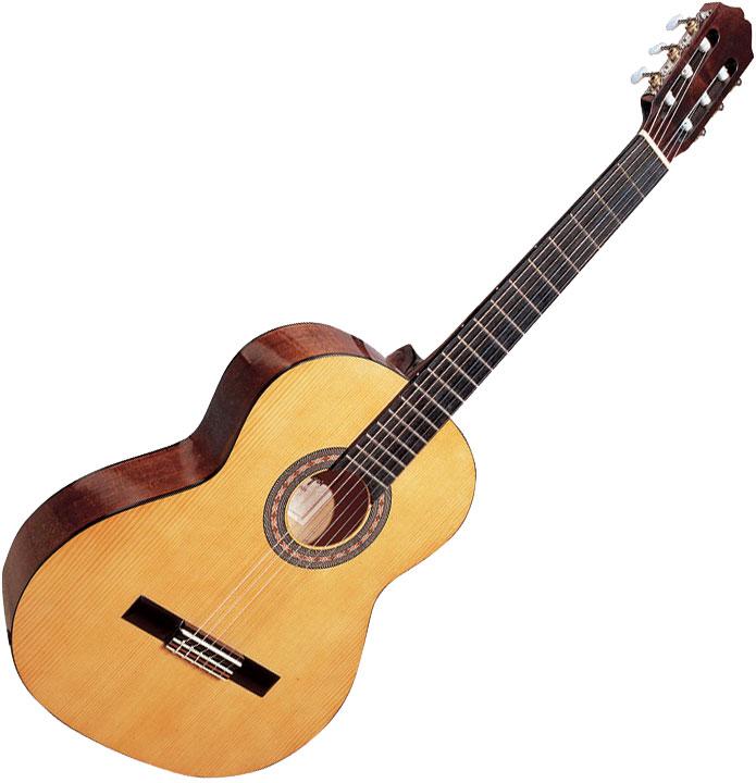 guitare acoustique hohner