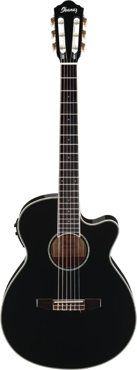 Ibanez Aeg10nii Black Nylon String Black