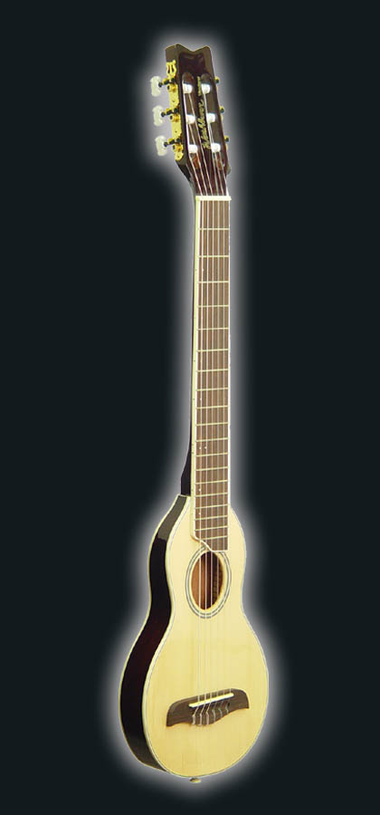 Washburn Rover Ro20 Nylon String + Softcase